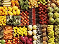 Бизнес по выращиванию овощей - бизнес-план, как начать с нуля 3