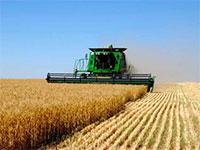 Успешное фермерское предприятие